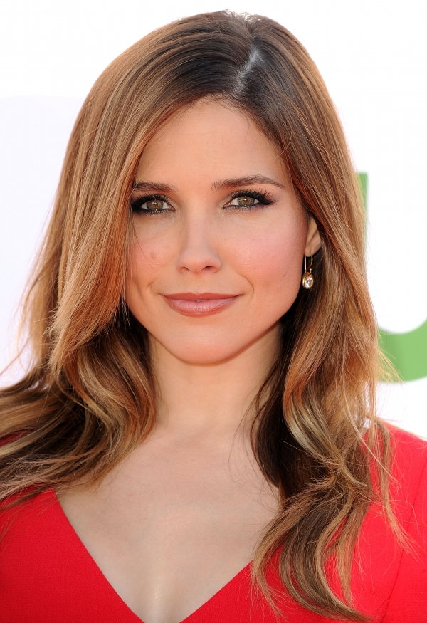 600full sophia bush